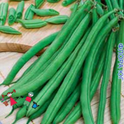 Фасоль спаржевая зеленая, весовая