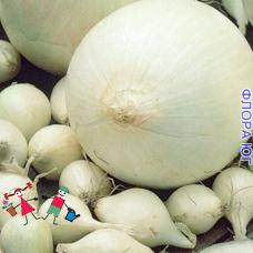 """Лук севок """"Сильвермун"""", Голландия (0,5 кг)"""