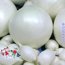 "Лук севок ""Сноуболл"", Голландия (0,2 кг)"