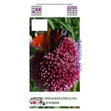 Аллиум. Лук декоративный Круглоголовый (Allium Sphaerocephalon), 5 шт. Голландия