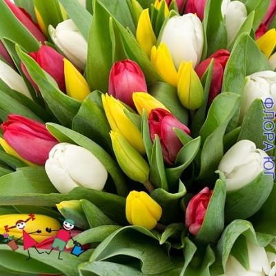 Тюльпаны-родина востока и герой средневековья